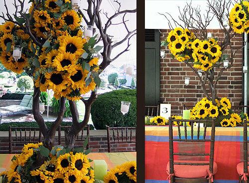 sunflower_01